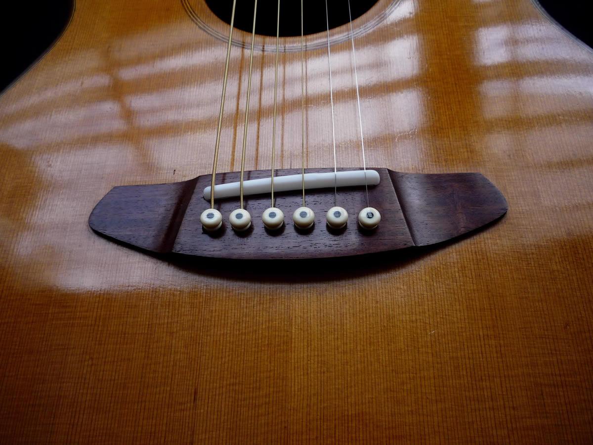 acustica-palisandro02
