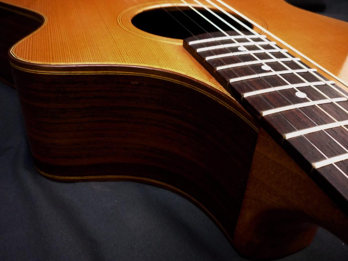 acustica-palisandro08