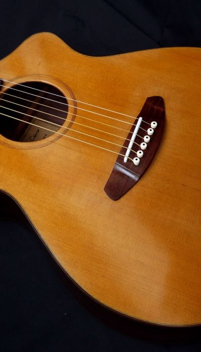 acustica-palisandro01