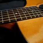 acustica-palisandro06