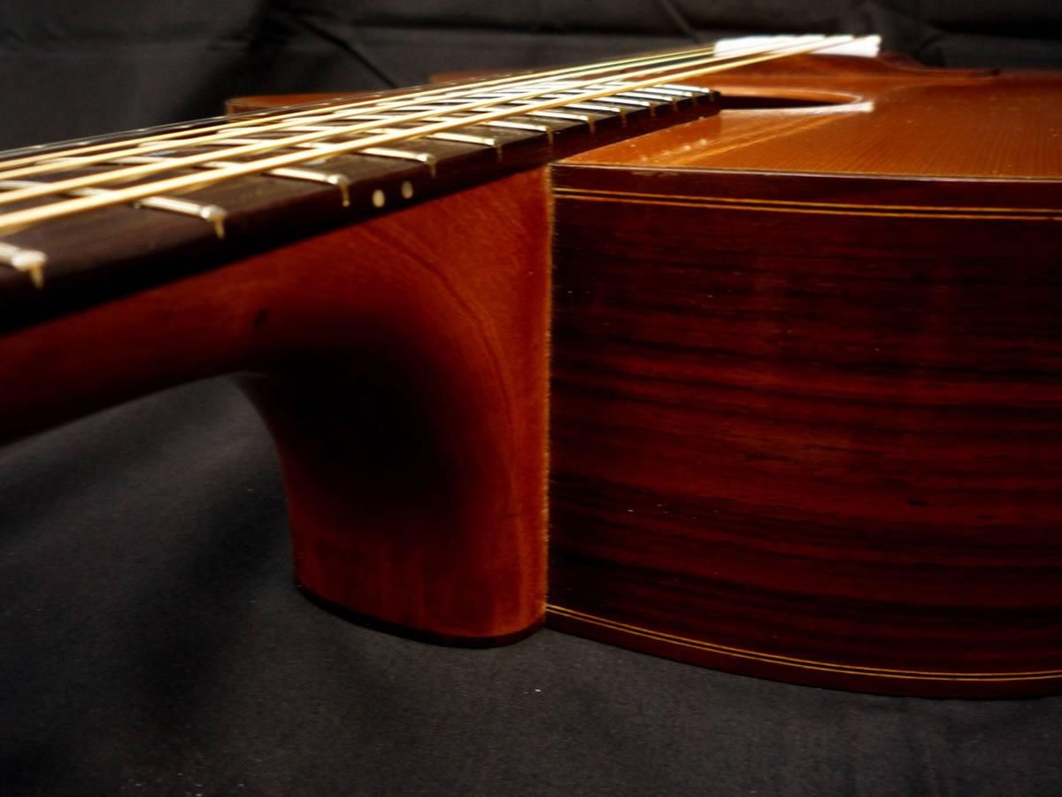 acustica-palisandro07